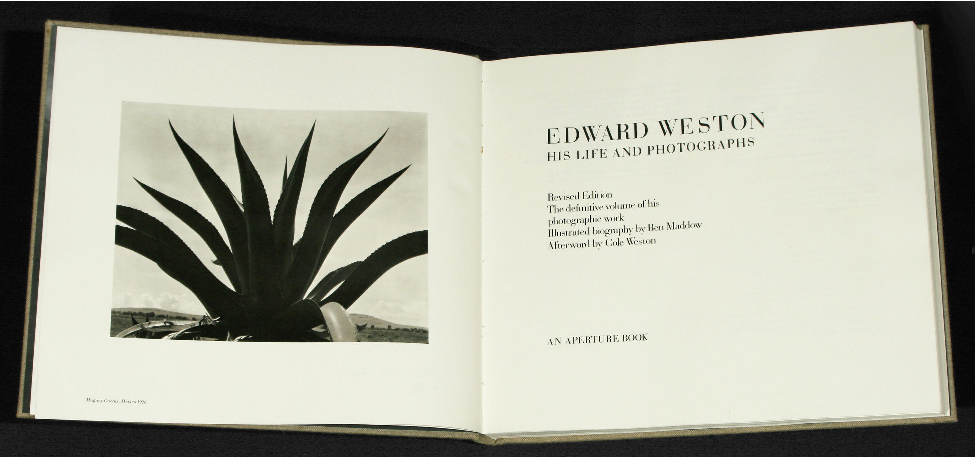 a glimpse into the life and works of edward weston And the community of artists who revolutionized american photography by i edward weston viewer a rare glimpse into the deepest realities of life.